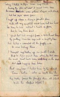 Robert Graves war poems